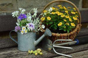 花とジョウロ